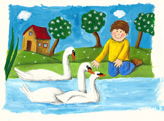 Little boy feeds swans