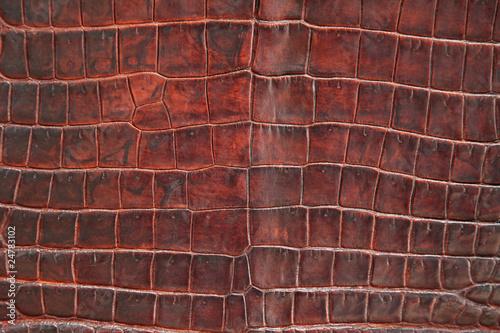 Papiers peints Cuir Krokodil Leder Textur