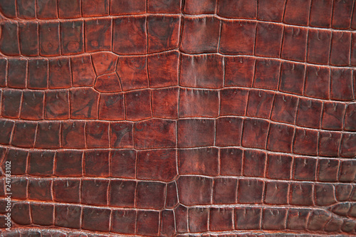 Deurstickers Leder Krokodil Leder Textur