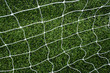 soccer net on green grass