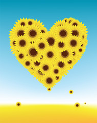 Sunflowers heart shape for your design, summer field