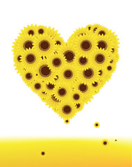 Sunflowers heart shape for your design, summer