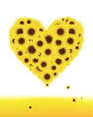Sunflowers heart shape for your design, summer