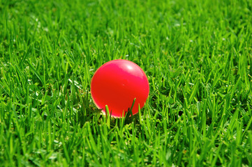 green grass pink ball