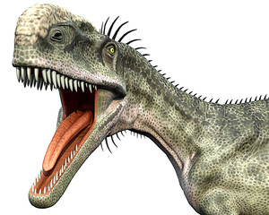 monolophosaurus side close head