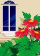 Illustration of plant with flower in a window background