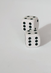 Zar dice on white table play