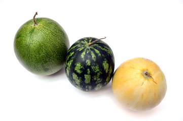 OGM frutta - biodiversità