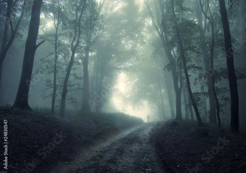 man walking in a green forest with fog