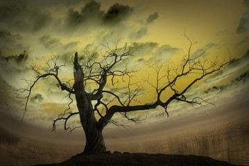 Abstract picture with bare tree