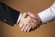 Two Businessmen shaking hands - Deal - Finance