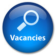 SEARCH VACANCIES Web Button (careers jobs opportunities seeking)