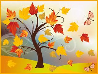 Autumn maple tree, background in vector illustration