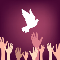 A lot of hands releasing white dove of peace.