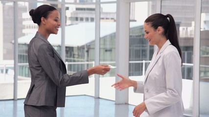 Businesswoman Introductions