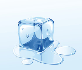 Ice cube and water