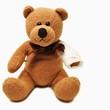 Teddy mit verletztem Arm