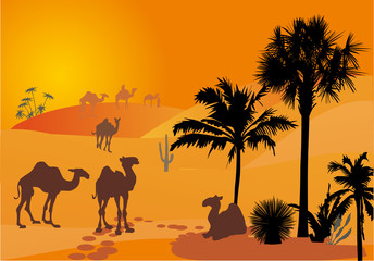 orange illustration with camels