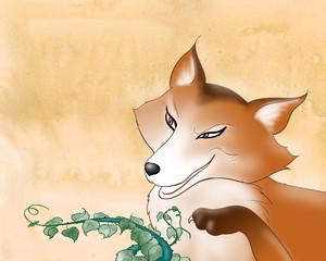 Muso di volpe con espressione furba