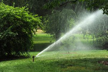 Irrigation sprinkler in the garden