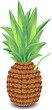 Ananas e Succo Fresco-Fresh Pineapple Juice-Vector