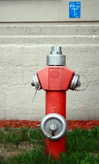 Hydrant - stand pipe - water plug