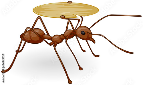 Ant Carrying Tray