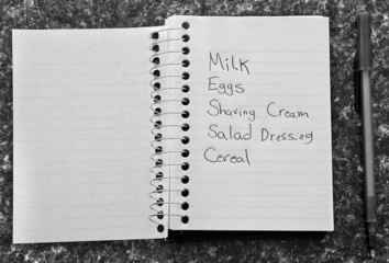 Shopping list on counter top