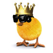 3d Royal chick
