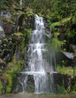 Waterfall at Mount Rainier