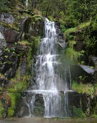 Waterfall at Mount Rainier