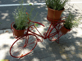 Red bicycle carrying plants