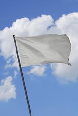 White flag2