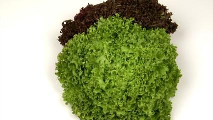Roter und grüner Pfdlücksalat
