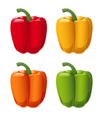 A vector of all sweet pepper colors