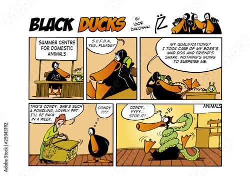 Black Ducks Comic Strip episode 51
