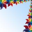 Pinwheel background