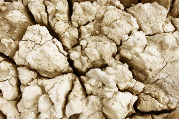 Cracks in dry earth