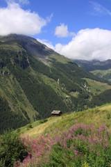 grenier suisse