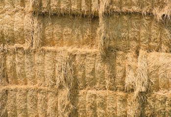 Close up of  yellow hay bales.