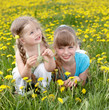 Children in field with flower.