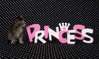 Kitten and princess sign