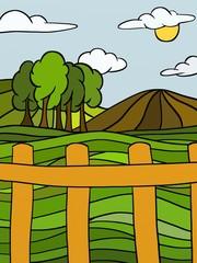 colline in estate