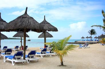 plage paradisiaque sous les cocotiers, île Maurice