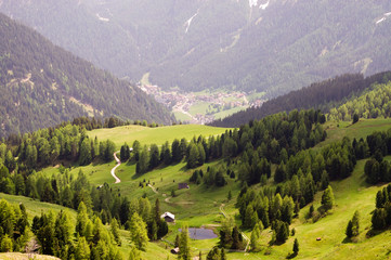 Tal Wanderwege Bäume Alpental natur unbewohnt alpen