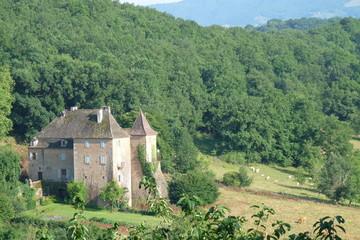 Château dans la plaine