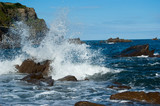 wavesplash - 25089577