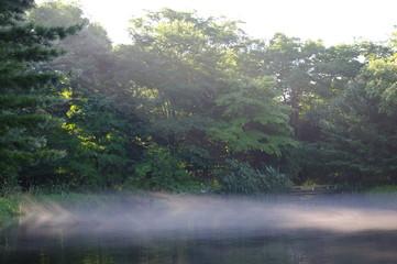 霧の池 5