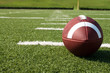 Closeup of American Football on Field - 25094192