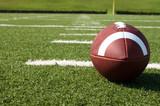 Photo: Closeup of American Football on Field